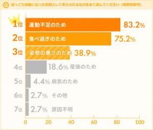 graph1_pokkori2